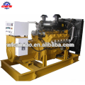 Natural Gas Generator Diesel generator / Gas Engine