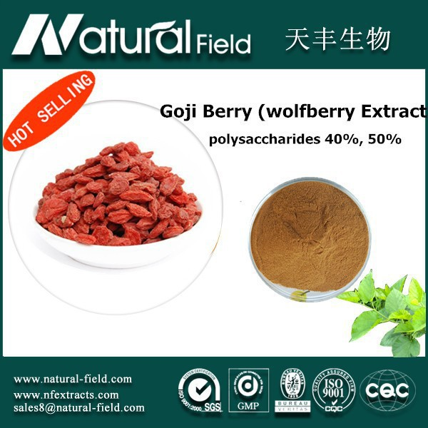 With 12 years experience Pharmaceutical And Chemical Laboratory Research free samples health food wolfberry extract powder