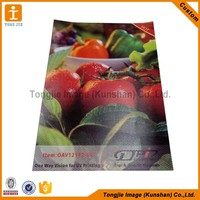 Custom high quality one way vision plastic film for advertising