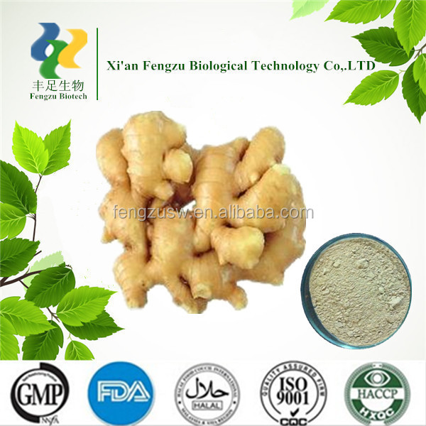 2014 dry herb Natural Plant Extract Cannon ginger extract