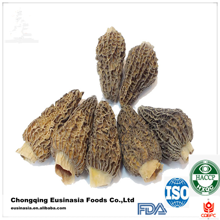 dried morchella esculenta/price of black morel mushroom/dried morel mushroom