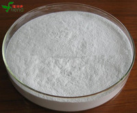 High purity Pharmaceutical grade Cosmetic grade hyaluronic acid powder