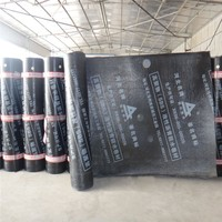NO.60 SBS polymer modified bitumen membrane with mineral granules