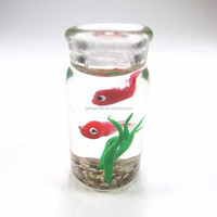 Factory custom cute acrylic mini fish tank high quality plexiglass aquarium