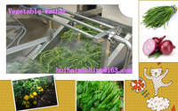 HOT!Bubble-type stainless steel bubble vegetable washer