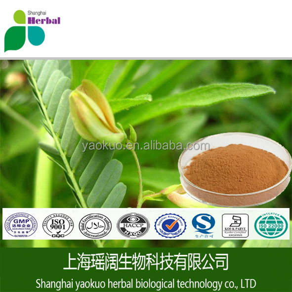High quality cassia nomame extract / pure Cassia nomame(Sieb.)kitag / natural 8% dimer flavone