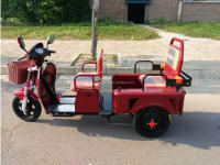 India market passenger 60V Voltage electric tricycle for 1000w motor power