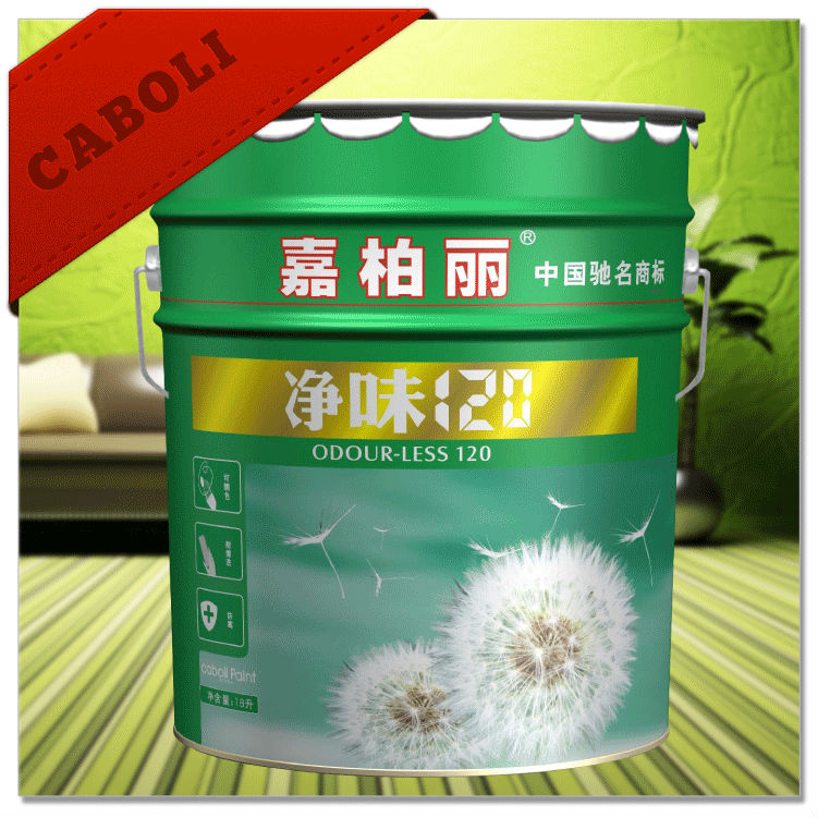Caboli White Matt Wall Decoration Building Coating