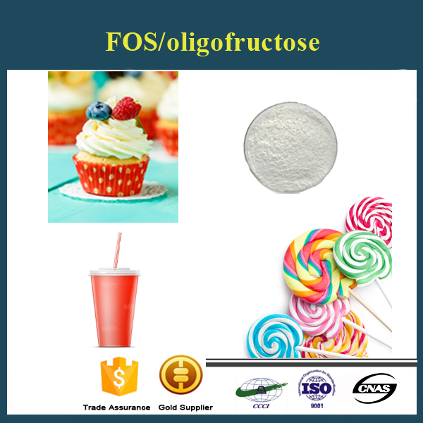 Hot sale fast delivery food additives chitosan oligosaccharide powder