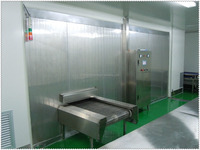 New Brand IQF Mozzarella Tunnel Freezer