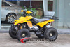 250cc GY6 ATV with oil cooled trike 250cc can-am outlander