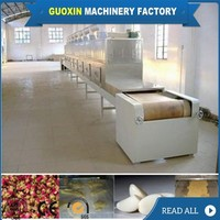 Low Investment Conveyor Microwave Fruit And Vegetable Dryer