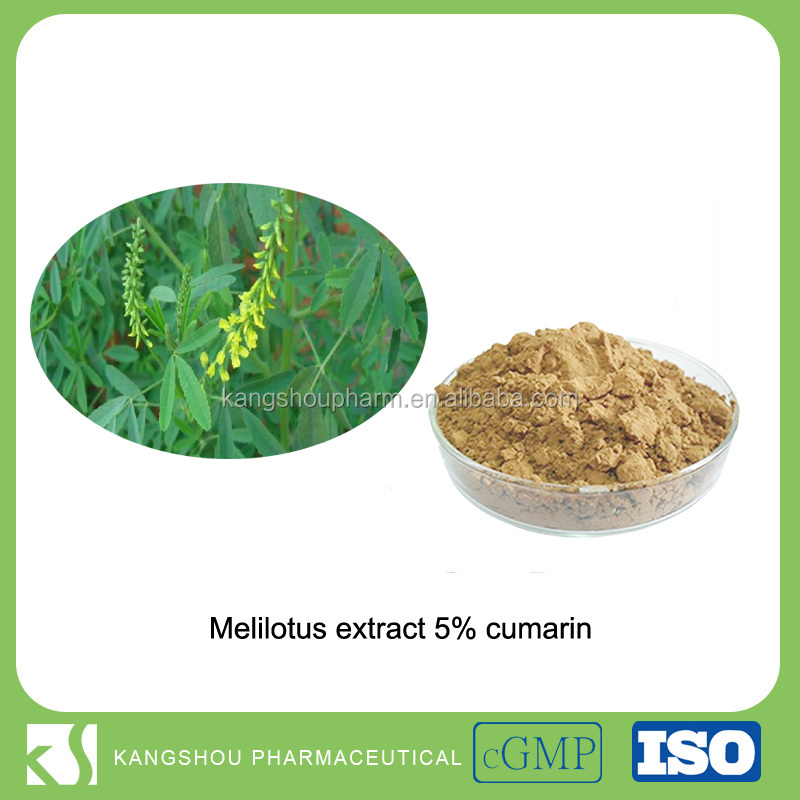 Anti-tumor& blood-thinning 5% Coumarin Organic Melilotus Extract Powder