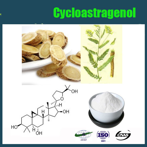 China wholesale Top Quality Astragalus Extract/Cycloastragenol 98%/Astragaloside IV 98% HPLC