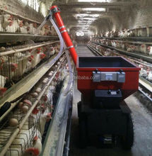 Agricultural Equipment model chicken layer cage price
