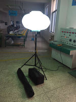 Manufacturer of Portable light outdoor lamp