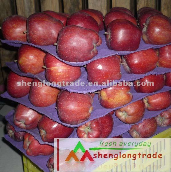 HOT SALES 2011 Huaniu Apple (FRESH)