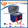 6 cans Beer Cooler Bags Lunch Bags For Adult EPE foam with Aluminum foil Padding Cooler Bag