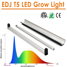the latest technology customized factory price EDJ epistar chip led plant grow lights lowes used agricultural greenhouses