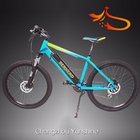 Changzhou Yunshine , Street legal road chinese electric motors bike