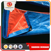 Eyelets With Plastic Pe Tarpaulin Tarpaulin Canvas Fabric