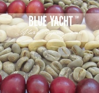 Wholesale Green Arabica coffee beans from Yunnan of China