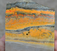 631 gr Natural Indonesia Bumble Bee Jasper Lapidary Slab Rough for Cabochon / Jewelry 60005502