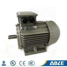 Three Phase Y2 Series Electric Motor 100 Kw