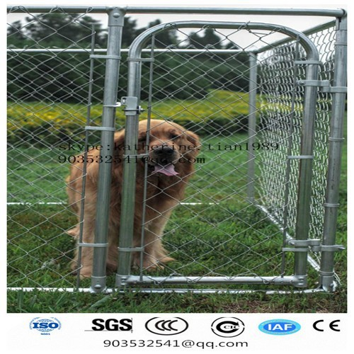 4 feet x 5 feet x 10 feet cheap outside dog kennels