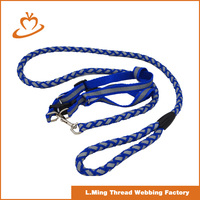 2016 new products OEM colors dog collar