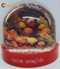 Colorful Fruit Snow Globe Gifts/ Decoration