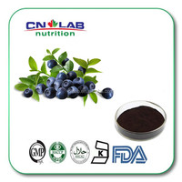 Natural Anthocyanidins Bilberry Extract