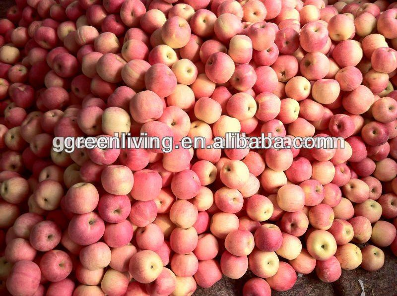 china green apple price and specifications