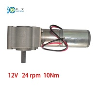 stock 12 volt electrical motor 10Nm 24 rpm dc Planetary reduction gear motor (not worm)