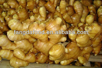 new crop ginger 100g and up