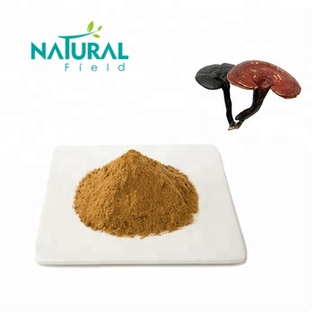 ISO Certificated Dried Reishi Mushroom Extract