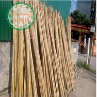 natural eco-friendly high quality bitter bamboo poles for trees supporting