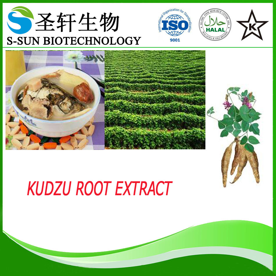 Best Sells Product Kudzu Root Extract, Natural Puerarin, China Supplier Pueraria Mirifica Powder