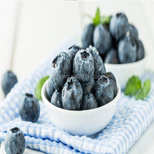 IQF sweet frozen style wholesale price blueberry of High-quality