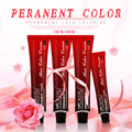 The best hot selling permanent hair color cream dye natural herbal hair dye organic hair