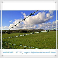 High quality best price barbed wire fence / high tensile steel barbed wire (Professional manufacturer, good quality)