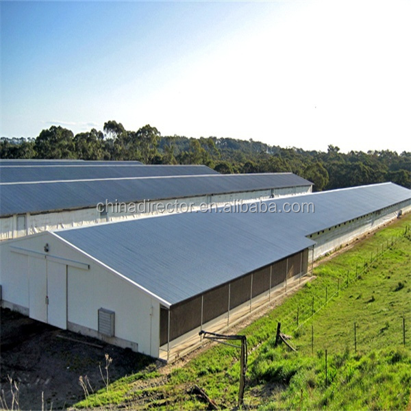 Low cost prefab steel structure barn hoggery shed pig farm for Low cost farm house