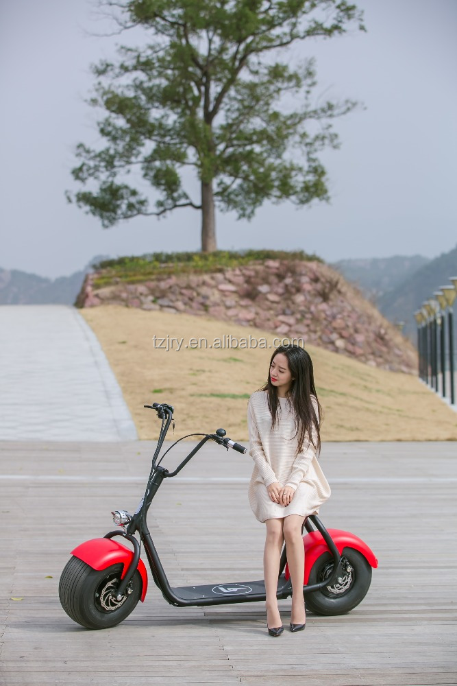 800W CE certificated Electric Vehicle Fly Electric Scooter
