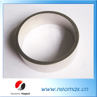 Strong Permanent Rare Earth Magnet For