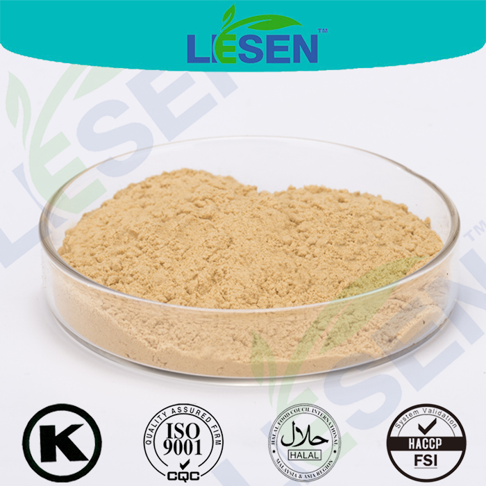 Factory Supply 100% Pure Chinese Angelica Extract/ Dong Quai Extract Ligustilide 1%
