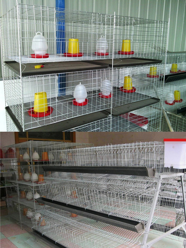 bird cage making machine factory directly sale