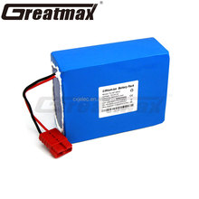 Rechargeable E-bike Battery 36V 48V 96V Lithium Ion 18650 Battery Pack for Electric Bikes