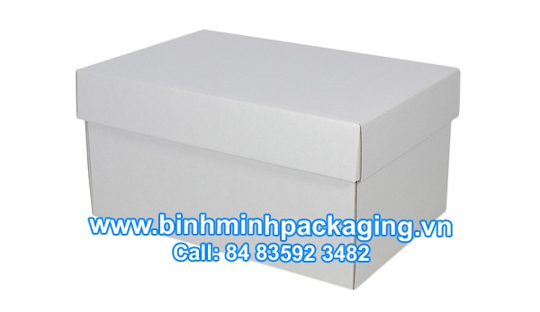 Corrugated Shoe Box, White Kraft Paper