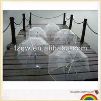 Apollo dome transparent PVC umbrella