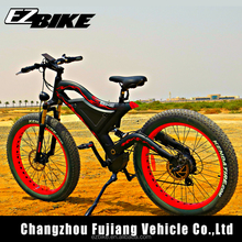 Cool Electric Bike with Big Capacity Samsung Battery/Electric Bike Bicycle/E-Bike